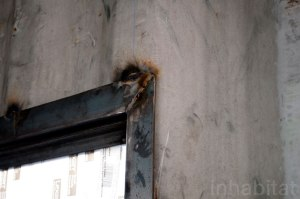window/door frames